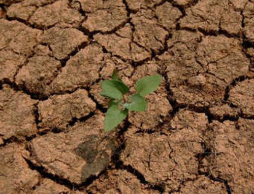 2016 : l'état de catastrophe naturelle reconnu à Châtel-Guyon