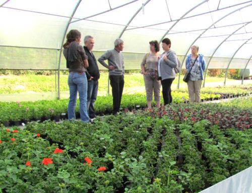Jardiniers amateurs :  rendez-vous aux portes ouvertes des serres municipales !
