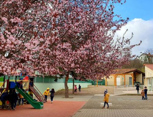 Portes ouvertes des écoles et inscriptions en maternelle : consultez les dates