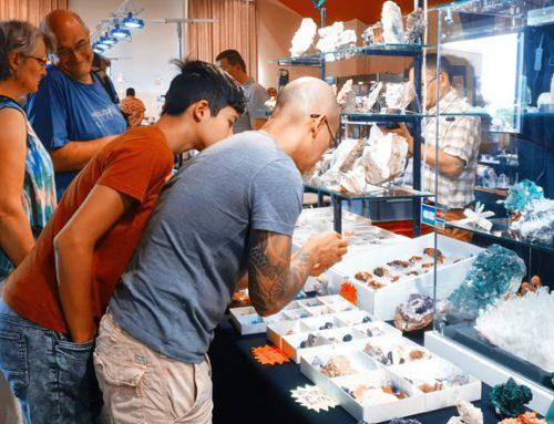 La minéralogie et les monstres marins au cœur du 57ème salon Géologix