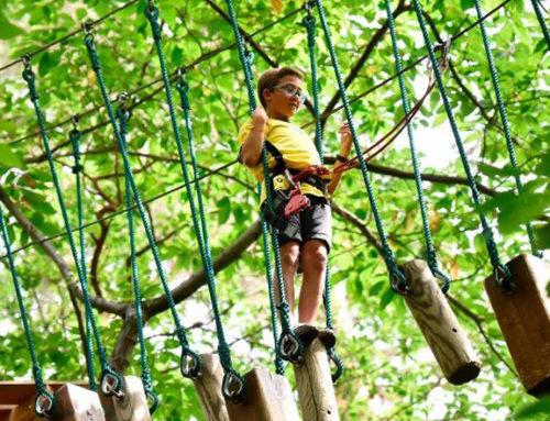 Ouverture exceptionnelle du Parc Écureuil pour les vacances de février